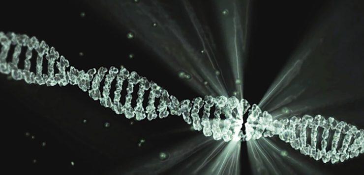 L'ADN pourrait être l'avenir du stockage de données